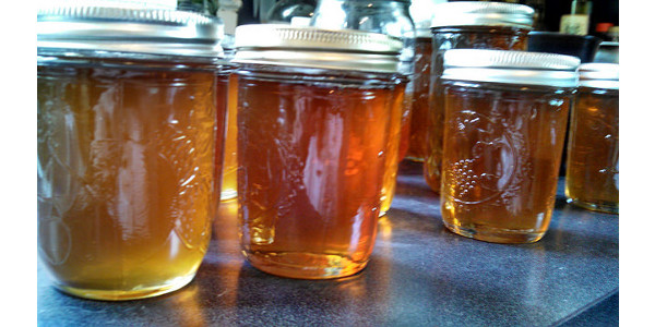Farm-to-table and honey tasting