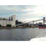 shipping grain