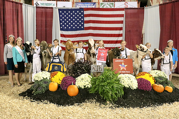Exhibitor wins junior showmanship competition