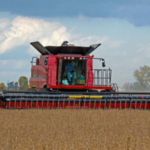 Consider harvesting soybeans early. (Photo by Mike Staton, MSU Extension)