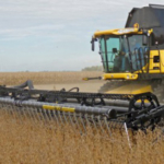 Due to the variable distribution of precipitation across the state this summer, some producers will harvest fields with significant lodging and others will harvest short plants with brittle pods. The recommendations provided in this article will help soybean producers reduce their losses under either scenario. (Photo by Mike Staton, MSU Extension)