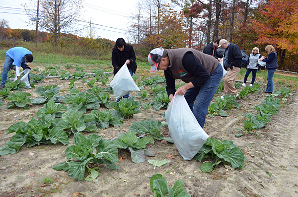 Grants available for gleaning organizations