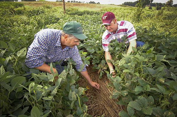 Beginner Farmer Training Program taking apps