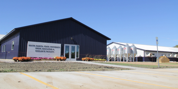 South Dakota State University Swine Day on October 11 will celebrate the first anniversary of the grand opening of the new SDSU Swine Education and Research Facility and Wean-to-Finish Research Barn in Brookings, SD. Officially dedicated in October of 2016, Department of Animal Science researchers continue to utilize the $7.4 million facility to investigate issues relevant to the swine industry. The event will be held on October 11, 2017 at the South Dakota State University Swine Education and Research Facility. (South Dakota State University)