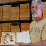 NC State Insect Museum Collection Manager Bob Blinn, with just part of the donated collection. (Courtesy of NC State University)