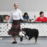Joely Craver of Bond County was one of 160 participants in the 2017 Illinois State 4-H Dog Show held Aug. 26 and 27 in Urbana. Joely participated in the junior showmanship division. (Courtesy of University of Illinois Extension)