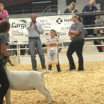 The Kansas Junior Livestock Show (KJLS), proudly sponsored by Cargill, will celebrate its 85th year by hosting 812 youth from 95 counties who have entered 2,033 animals. (Kansas Junior Livestock Show via Facebook)