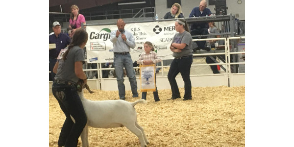 Kansas Junior Livestock Show celebrates 85 years