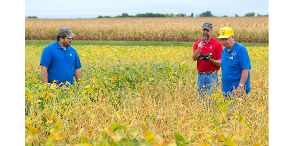 Helping farmers make decisions for half a century