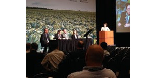 Minnesota represented at grain, soy events
