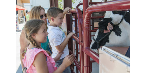 The event on Sept. 30 will offer even more hands-on activities and livestock. (Courtesy of Missouri Department of Agriculture)