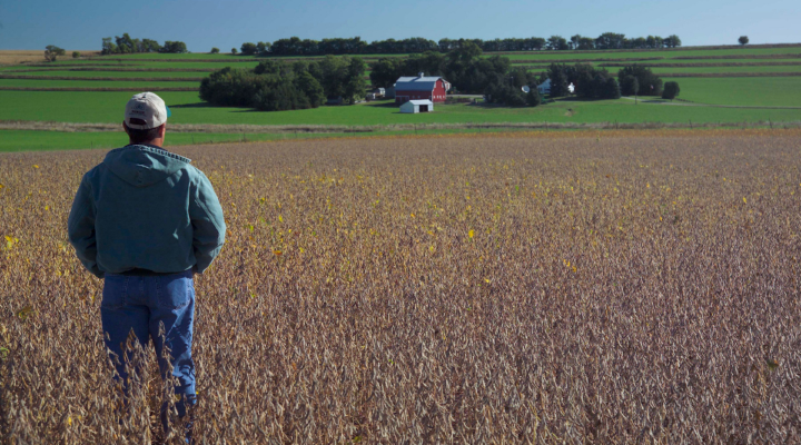 New dicamba regulations agreed upon