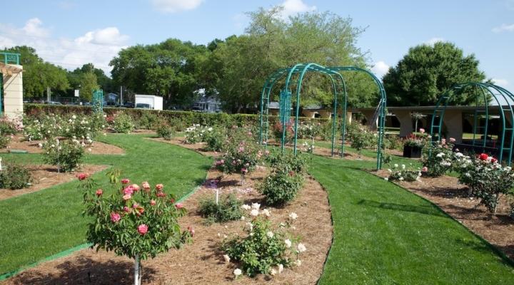 Master Gardener program begins Jan. 9
