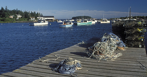 Fish magnate must forfeit 4 boats, 34 permits