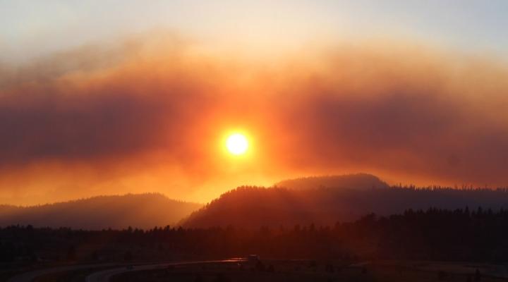 Wildfires scorch Calif. pot crop at harvest