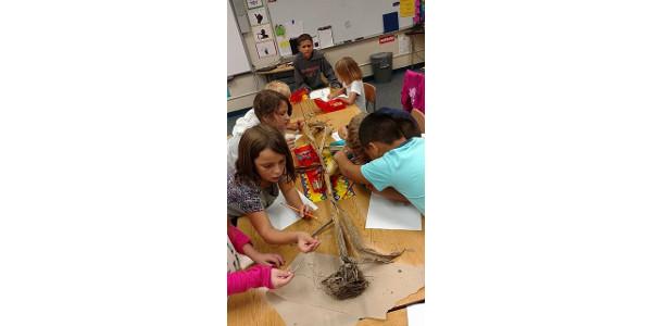 New classroom materials from Kansas Corn