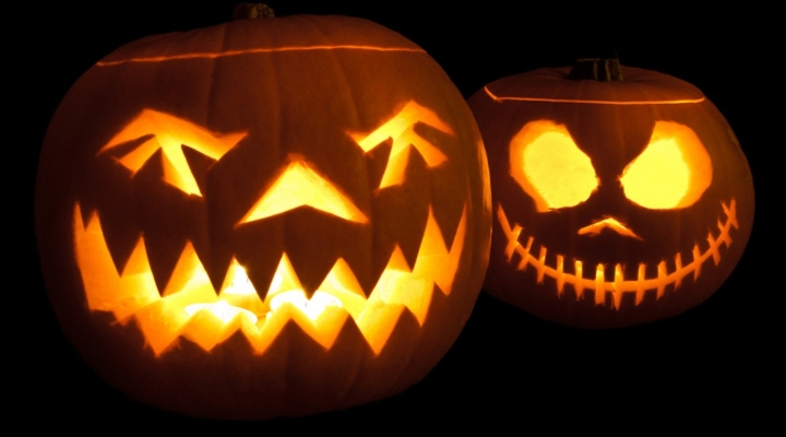 Spooky critters inhabit soil's dark places