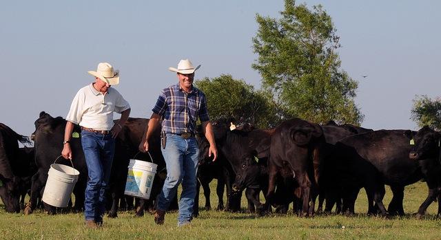 Improving agriculture labor management
