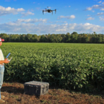 Batten uses a drone to scout the fields of his 600-acre Johnston County farm. (Courtesy of NC State University)