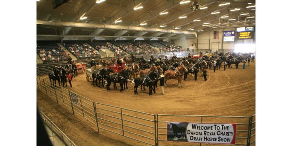 2018 Dakota Royal Charity Draft Horse Show