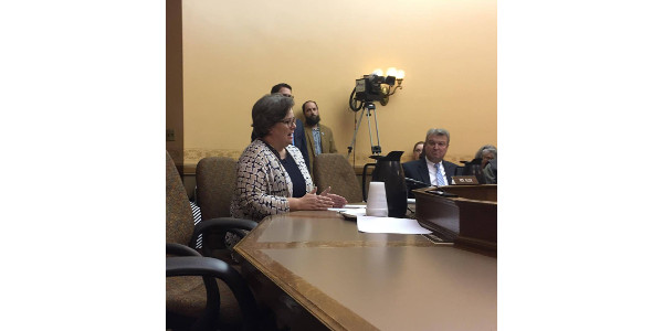 "In her testimony against AB353, Sarah Lloyd, Wisconsin Dells dairy farmer and Wisconsin Food Hub Cooperative representative, noted, ""Co-ops are not about profit-taking; they are designed to serve the interests of their members."" (Courtesy of Wisconsin Farmers Union)"