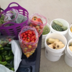 Produce donated to Hope Harbor on August 9. (Courtesy of University of Nebraska-Lincoln)