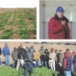 Iowa Learning Farms, along with the Natural Resources Conservation Service (NRCS) and the Jasper County Soil & Water Conservation District, will host a cover crop and soil health field day on Tuesday, November 7, from 3:30-5:30p.m. on the Gordon Wassenaar farm, rural Prairie City. (Screenshot from flyer)