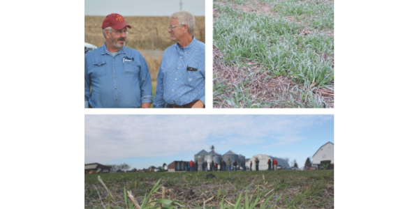 Cover crop field day planned for November 15th