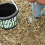 There are several advantages to soil test in the fall. (Photo by George Silva, MSU Extension)