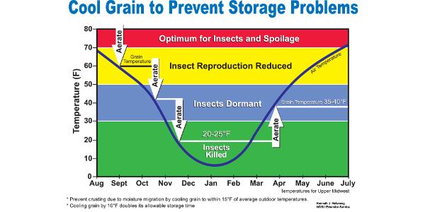 Long-term grain storage requires management