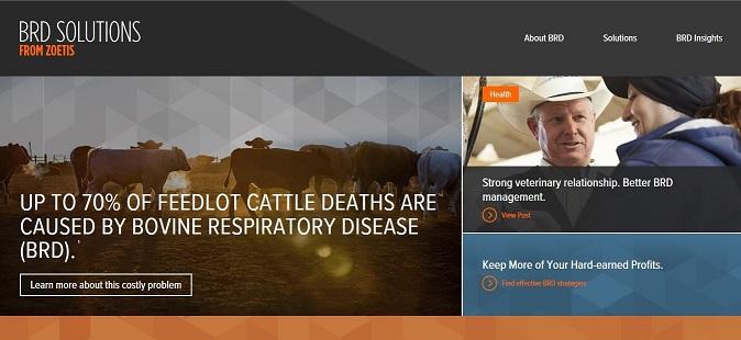Zoetis introduces BRD Solutions website
