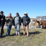 NCTA students, from left, Garison, Damian, Frances and KeAnn with Farm Manager Roy Cole moved cows from summer pasture. (Mary Crawford, NCTA photo)