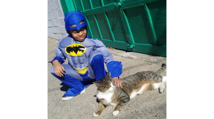 5-year-old dresses up to help homeless cats