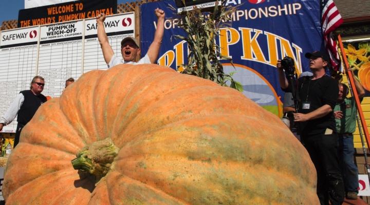 New U.S. record set at pumpkin weigh-off