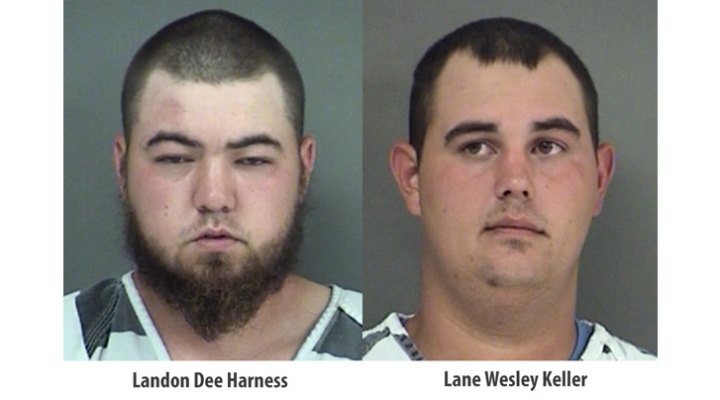 Arrests made in cattle theft
