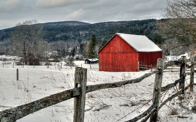 Agritourism farms offer holiday attractions
