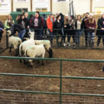 """""""Girls' Night on the Farm,"""" took place Tuesday, Nov. 7 at the Western Illinois University Livestock Center. (Courtesy of WIU)"""