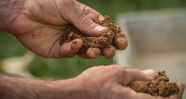 Interpreting soil sample reports