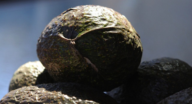 Hass Avocado Board appointments