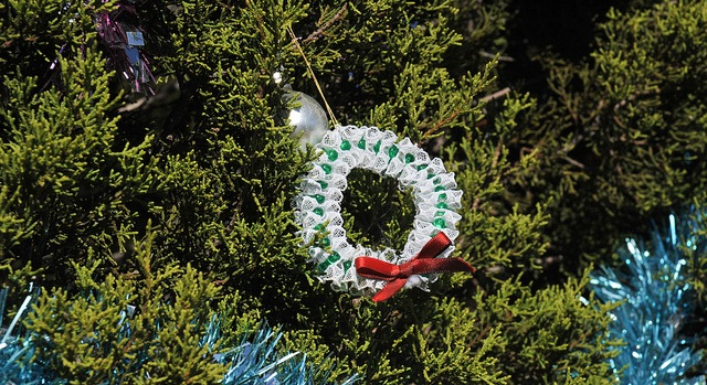 Christmas tree shortage not felt in Texas