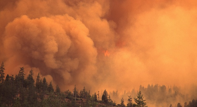 Calif. asks U.S. for $7.4B in wildfire aid