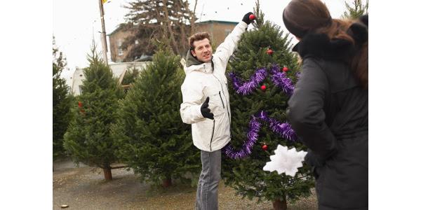 Christmas tree selection 2