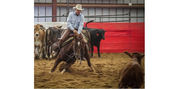 S.D. ranchers qualifies for NCHA World Finals Show