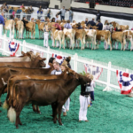 NAILE drew nearly 30,000 entries with competitors, exhibitors and attendees from 49 states and six foreign countries. (Courtesy of Kentucky Venues)