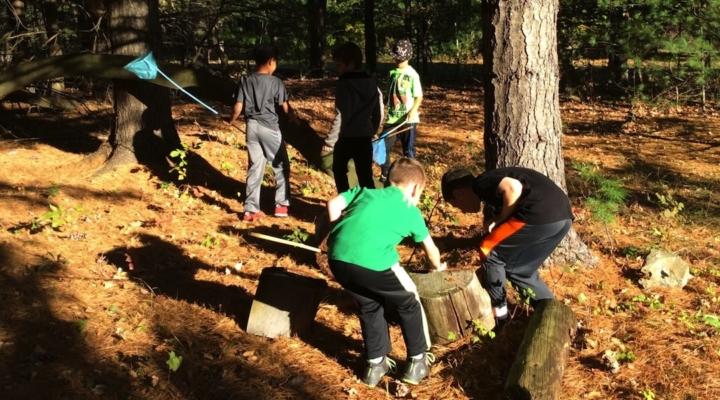 WAJ Science Club explores forest ecosystem