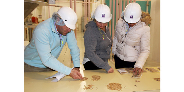 Lab exercises in the KSU Hal Ross Flour Mill engaged hands-on learning for participants in the Buhler–KSU Executive Milling in English course. (Courtesy of KSU-IGP Institute)