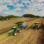 Researchers at the University of Kentucky College of Agriculture, Food and Environment are beginning on-farm studies to look at which best management practices work best for Kentucky grain farms, and they need producers' help. (PHOTO: Matt Barton, UK agricultural communications)