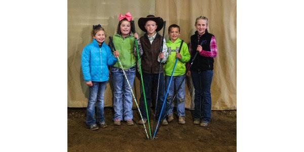 Annual Springs Showdown Calf Show