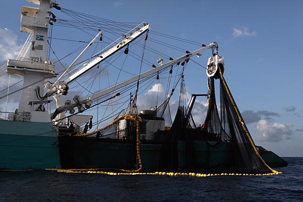 Why North Carolinia boats are fishing off N.J.'s coast