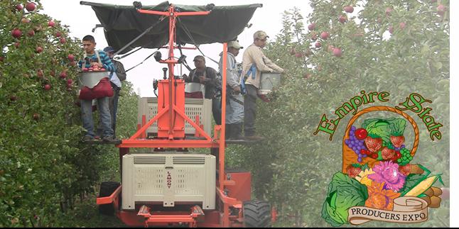 Tree Fruit IPM: Sudden Apple Decline